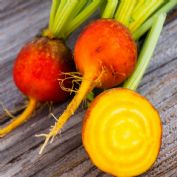 Beetroot Golden Burpees appx 300 seeds